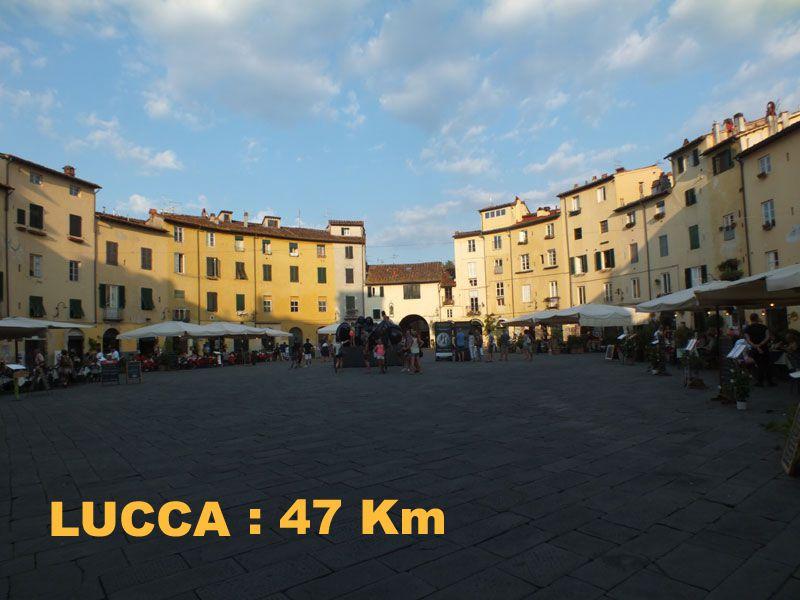 Affitto Appartamento Lucca
